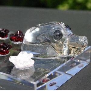 Glazen zeehond met roosjes