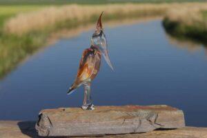 Glazen specht Woody Woodpecker