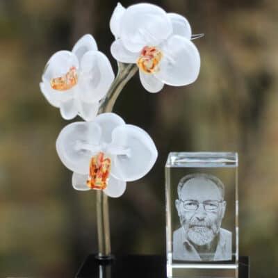 Orchidee tak van glas