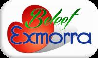 Beleef Exmorra