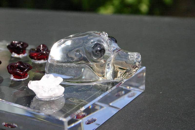 Glazen zeehond en roosjes met as