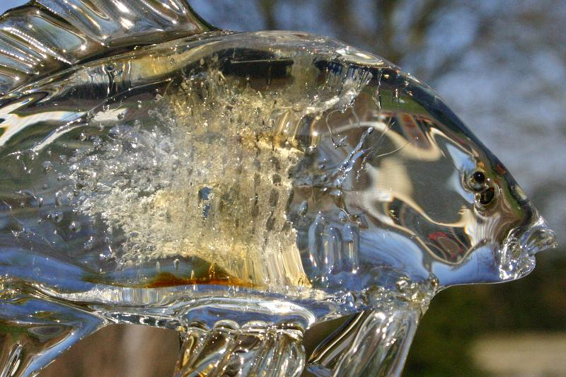 Karper van glas met as